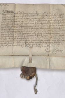 Dokument króla Kazimierza Jagiellończyka dotyczący przekazania Spytkowi z Jarosławia podkomorzemu przemyskiemu, pieniędzy na rozbudowę miasta Leżajsk