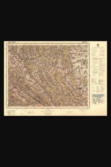 Mapa taktyczna Polski : pas 50, słup 35 : Dobromil