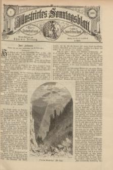 Illustrirtes Sonntagsblatt : zur Unterhaltung am häuslichen Herd. 1885, Nr. 2 ([11 Januar])