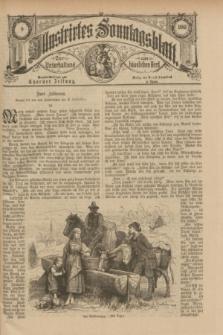 Illustrirtes Sonntagsblatt : zur Unterhaltung am häuslichen Herd. 1885, Nr. 9 ([1 März])