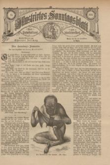 Illustrirtes Sonntagsblatt : zur Unterhaltung am häuslichen Herd. 1885, Nr. 24 ([14 Juni])
