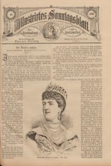 Illustrirtes Sonntagsblatt : zur Unterhaltung am häuslichen Herd. 1888, Nr. 48 ([25 November])
