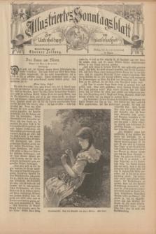 Illustriertes Sonntagsblatt : zur Unterhaltung am häuslichen Herd. 1898, Nr. 31 ([31 Juli])