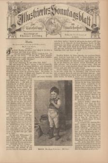 Illustriertes Sonntagsblatt : zur Unterhaltung am häuslichen Herd. 1898, Nr. 37 ([11 September])