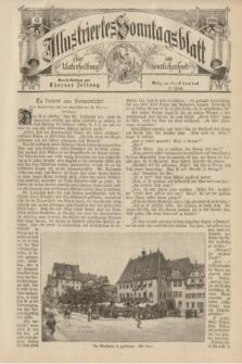 Illustriertes Sonntagsblatt : zur Unterhaltung am häuslichen Herd. 1898, Nr. 45 ([6 November])