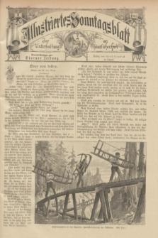 Illustriertes Sonntagsblatt : zur Unterhaltung am häuslichen Herd. 1901, Nr. 11 ([17 März])