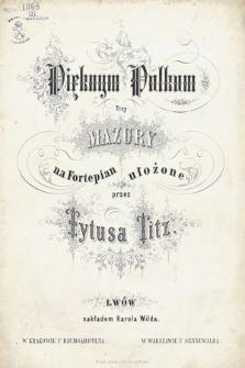 Pięknym Polkom : trzy mazury na fortepian ułożone