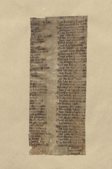 Berol. Ms. Germ. Qu. 1895 nr 8